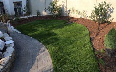 OGRODY A&J trawnik z rolki